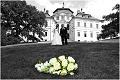 Svatební fotografie Chlumec nad Cidlinou 29