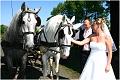Profesionální Svatební Fotografie 16